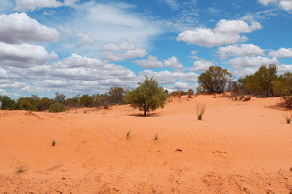 Australisches Outback