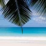 Reiselust entfachen durch Lebensberatung – Antworten finden und Fernweh verspüren