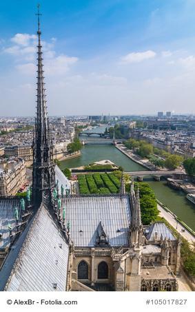 Paris Panorama von Notre Dame